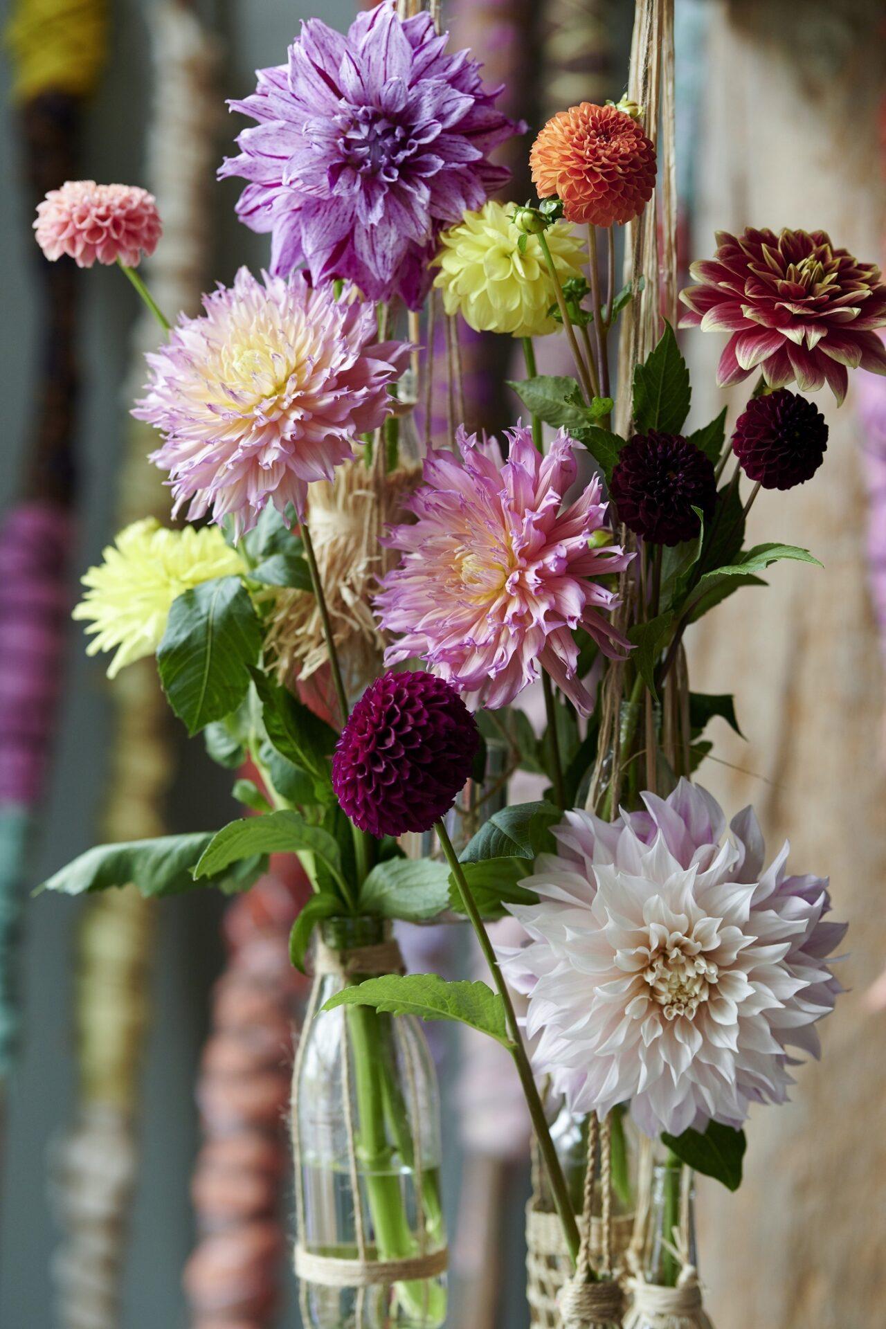 Dahlien Blumenstrauß