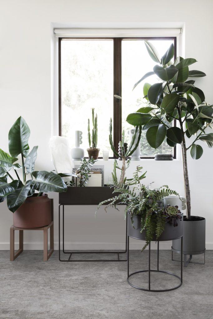 Plantbox Garten