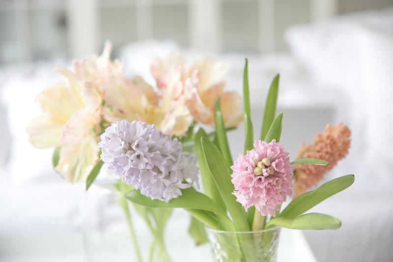 Frühlingsblüher in Pastelltönen